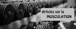 articles de musculation