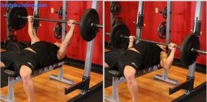 Coach sportif pr parateur physiqueprogramme de musculation full body niveau confirm - Progresser developpe couche ...