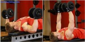 Coach sportif pr parateur physiqueprogramme de musculation full body niveau interm diaire - Progresser developpe couche ...