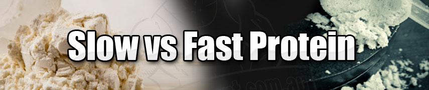 proteine rapide et proteine lente