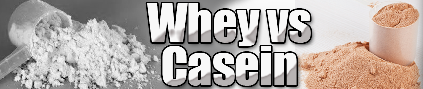 whey vs caseine